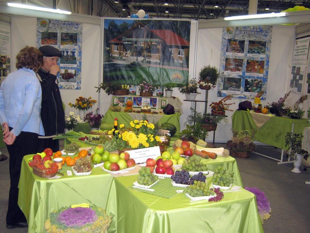 «Агросиб»: площадка, объединяющая профессионалов.