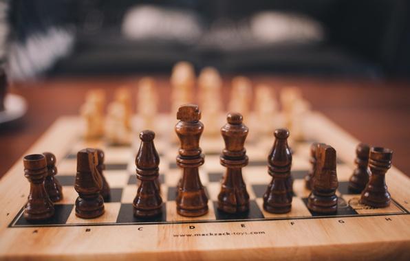 Соревнования по шахматам и плаванию