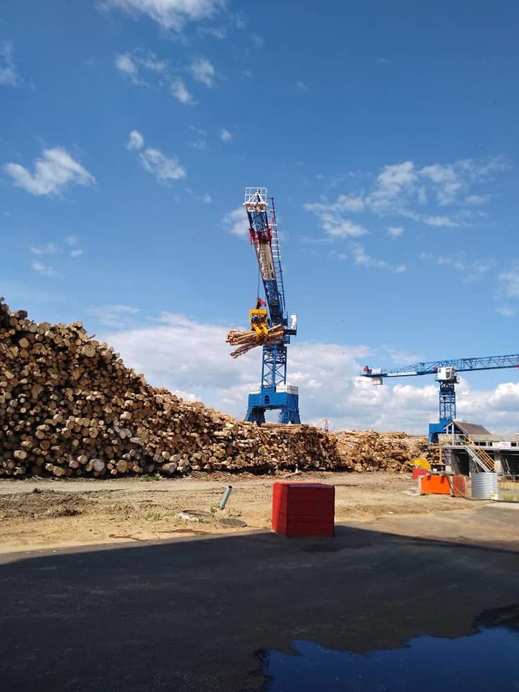 Прохождение практики на крупнейшем лесоперерабатывающем предприя